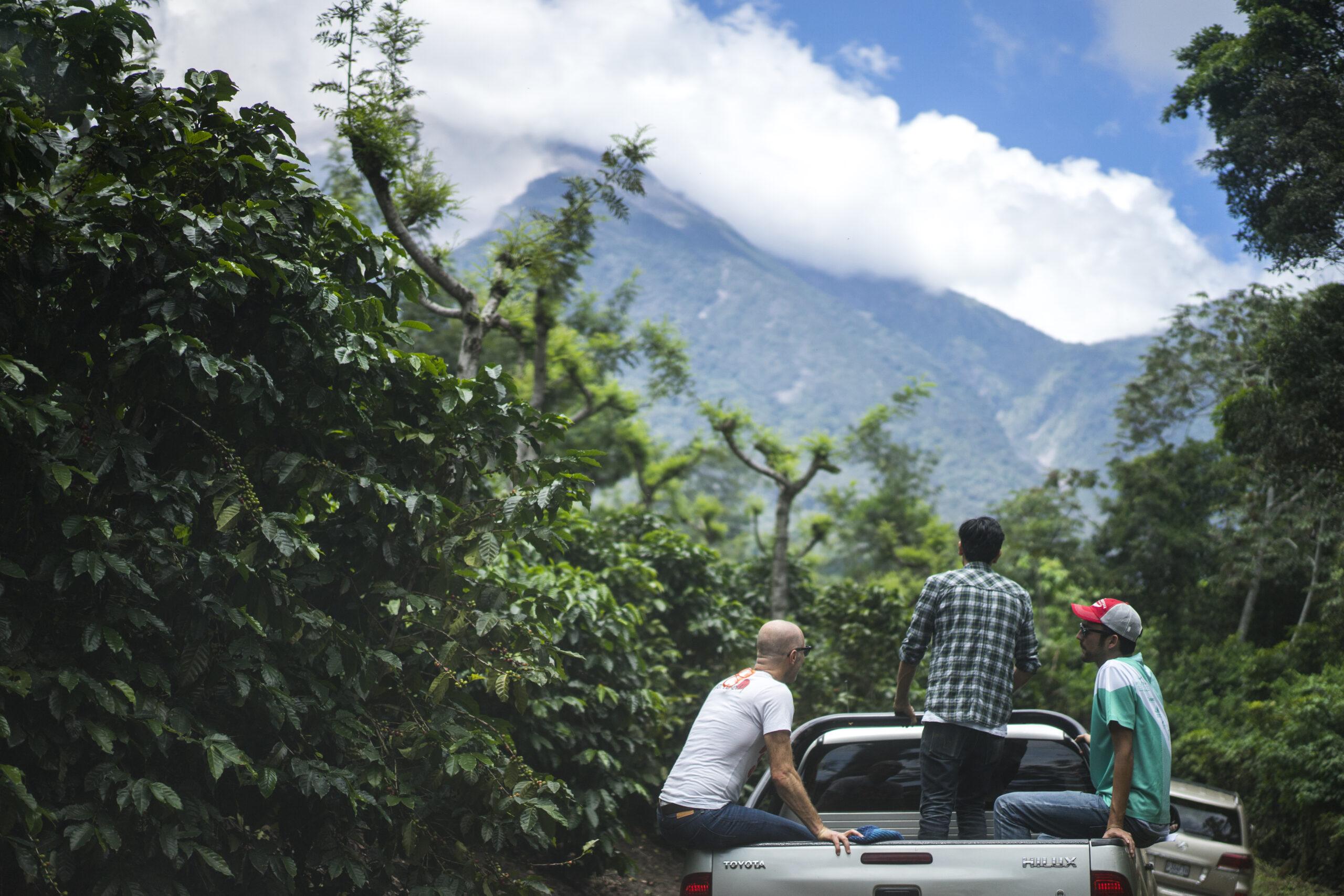 ECW 2015 – Guatemala