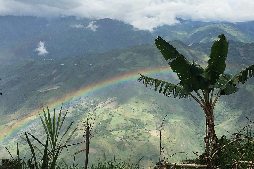 Tres Santos Colombia: Linares