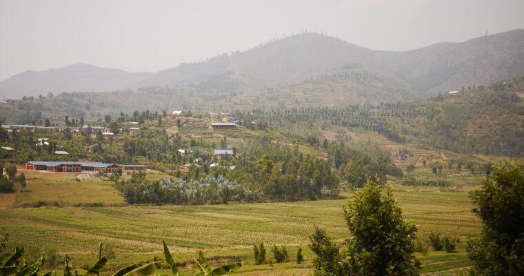 Rwanda's coffee heroes